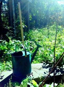 Garden 9-4
